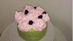 Торт фисташковый с малиной 13
